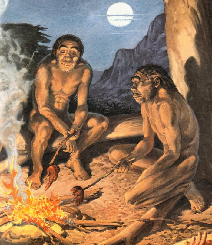 گوشت خوردن انسان اولیه